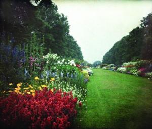 Gardens for the Duchess 1
