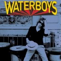 TheWaterboys