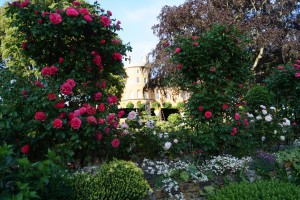 Gardens at Belvoir Castle - credit Swan Photography