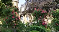 Early Bird Tickets Now Released for Belvoir Castle Flower and Garden Show 18-19 July 2020  Celebrity gardeners, stunning show gardens and borders, specialist plant growers, expert talks and […]